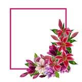 Поздравительная открытка с магнолиями и лилиями, акварелью Можно использовать как приглашение для свадьбы, дня рождения и других иллюстрация вектора