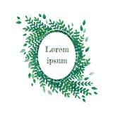 Поздравительная открытка с несимметричной овальной флористической гирляндой при листья зеленого цвета изолированные на белой пред бесплатная иллюстрация
