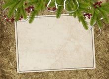 поздравление карточки ветвей Стоковое Изображение RF