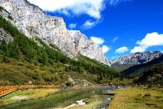 позеленейте ландшафт Стоковое Изображение