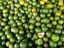 позеленейте померанцы Стоковые Изображения