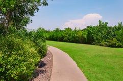 позеленейте сочную тропу парка Стоковое фото RF