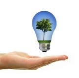 Позеленейте энергию Стоковое Фото