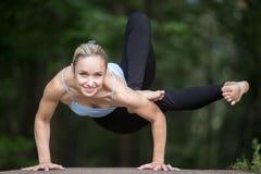 Позиция йоги Dragonfly стоковое изображение rf