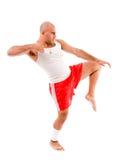 позиция человека бой мышечная стоковое фото