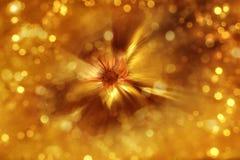 Позолоченная нерезкость сигнала цветка Стоковое Фото