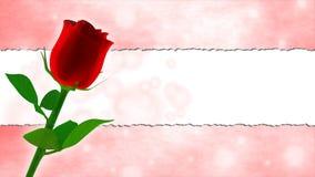 Поздравительая открытка ко дню рождения с красной розой и розовой рамкой Стоковая Фотография