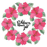 Поздравительная открытка вектора с флористическими элементами Стоковое Фото