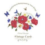 Поздравительная открытка лета винтажная с зацветая красным цветом бесплатная иллюстрация