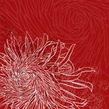 Поздравительная открытка приглашения или с хризантемой бесплатная иллюстрация