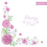 Поздравительная открытка роз цветка акварели Иллюстрация вектора