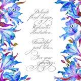 Поздравительная открытка с голубыми лилиями акварели Стоковые Фотографии RF