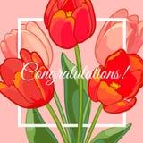 Поздравительная открытка с зацветая цветками тюльпана также вектор иллюстрации притяжки corel Стоковые Изображения RF