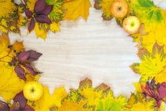Поздравительная открытка с листьями осени Стоковые Фотографии RF