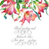Поздравительная открытка с красными лилиями акварели Стоковые Фотографии RF