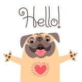 Поздравительная открытка с милой собакой Сладостный мопс говорит здравствуйте! Стоковое Изображение RF