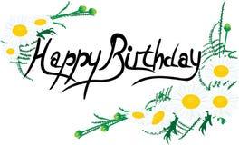 Поздравительная открытка с днем рождения с маргаритками Стоковые Изображения