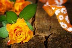 Поздравительная открытка с розами Стоковые Изображения