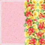 Поздравительную открытку Illustation с акварелью роз можно использовать как карточка приглашения Стоковые Фотографии RF