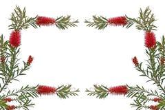 Поздравительные открытки с цветками на белой предпосылке Стоковые Фотографии RF