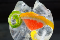 Поймайте тонический макрос в западню коктеиля с лимоном и грейпфрутом Лимы Стоковые Изображения