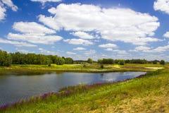 Поймы вдоль Рейна, Нидерландов Стоковая Фотография