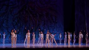 Покажите жемчуга балета сток-видео