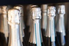 показанные бутылки шампанского Стоковая Фотография
