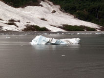показывать слоев айсберга стоковые фото