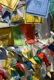 показывать флагов животных Стоковое Изображение