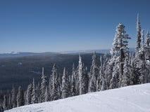 покатое катание на лыжах Стоковые Изображения RF