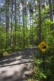 Покатый велосипед подписывает внутри парк штата Itasca, северную Минесоту, США стоковое фото