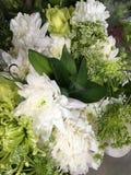 Пока цветки Стоковое Изображение RF