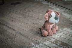 Покинутая собака игрушки плюша стоковое изображение