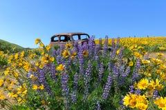 Покинутая старая тележка среди Wildflowers весной Стоковое Фото