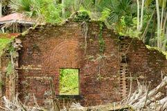 покинутая стена Стоковое Фото