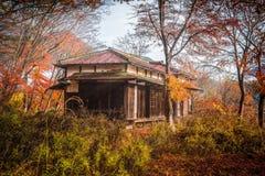 покинутое деревянное дома старое Стоковые Изображения
