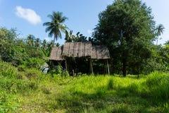 Покинутое загубленное бунгало хаты на тропическом острове среди пальм и травы стоковое фото rf