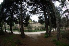 Покинутое здание дома в деревне в саде Баку ботаническом Никто в парке с деревьями Весеннее время стоковая фотография