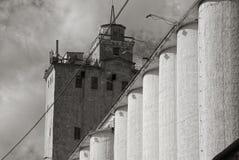 покинутое зерно лифта Стоковая Фотография