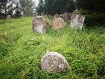 покинутое кладбище Художнический взгляд в цветах стоковые изображения