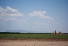 покинутое кладбище Стоковое Изображение