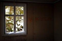Покинутое 11/6 отсутствие lifejoy Стоковая Фотография RF