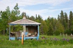 Покинутые дом или лачуга в древесинах Стоковые Фотографии RF