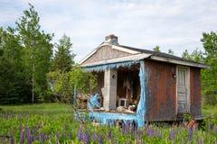 Покинутые дом или лачуга в древесинах Стоковое Изображение RF