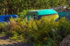 Покинутые тележки перехода в кустах Стоковые Фото