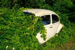 Покинутый автомобиль Стоковая Фотография RF