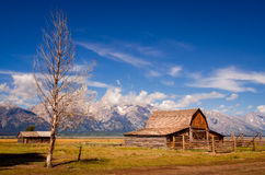 Покинутый амбар на строке Мормона в грандиозном Teton NP, США Стоковые Фотографии RF