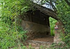 Покинутый амбар окруженный пуком заводов и деревьев Стоковые Изображения RF