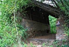 Покинутый амбар окруженный пуком заводов и деревьев Стоковые Изображения